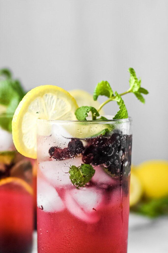 sweetketolife.com-keto-blueberry-mojito-recipe-lemon-mint